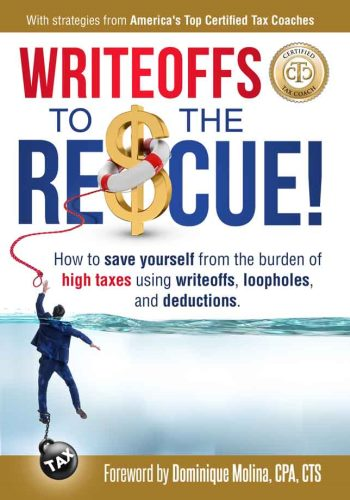 Writeoffs to the Rescue free book